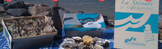 Médaillées d'or en 2020, les huîtres de l'entreprise adaptée « La Calvadosienne » pour des fêtes de fin d'année qui mêlent qualité et solidarité.